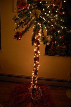 My Chirstmas Palm Tree 4