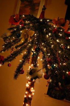 My Christmas Palm Tree 1