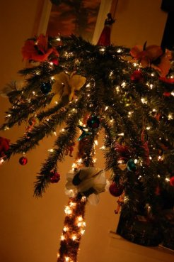 My Christmas Palm Tree 1