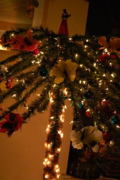 My Christmas Palm Tree 2