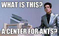 Center for Ants