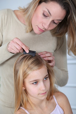 Coconut Oil - Head Lice