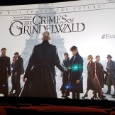 Fantastic Beast Crimes of Grindelwald